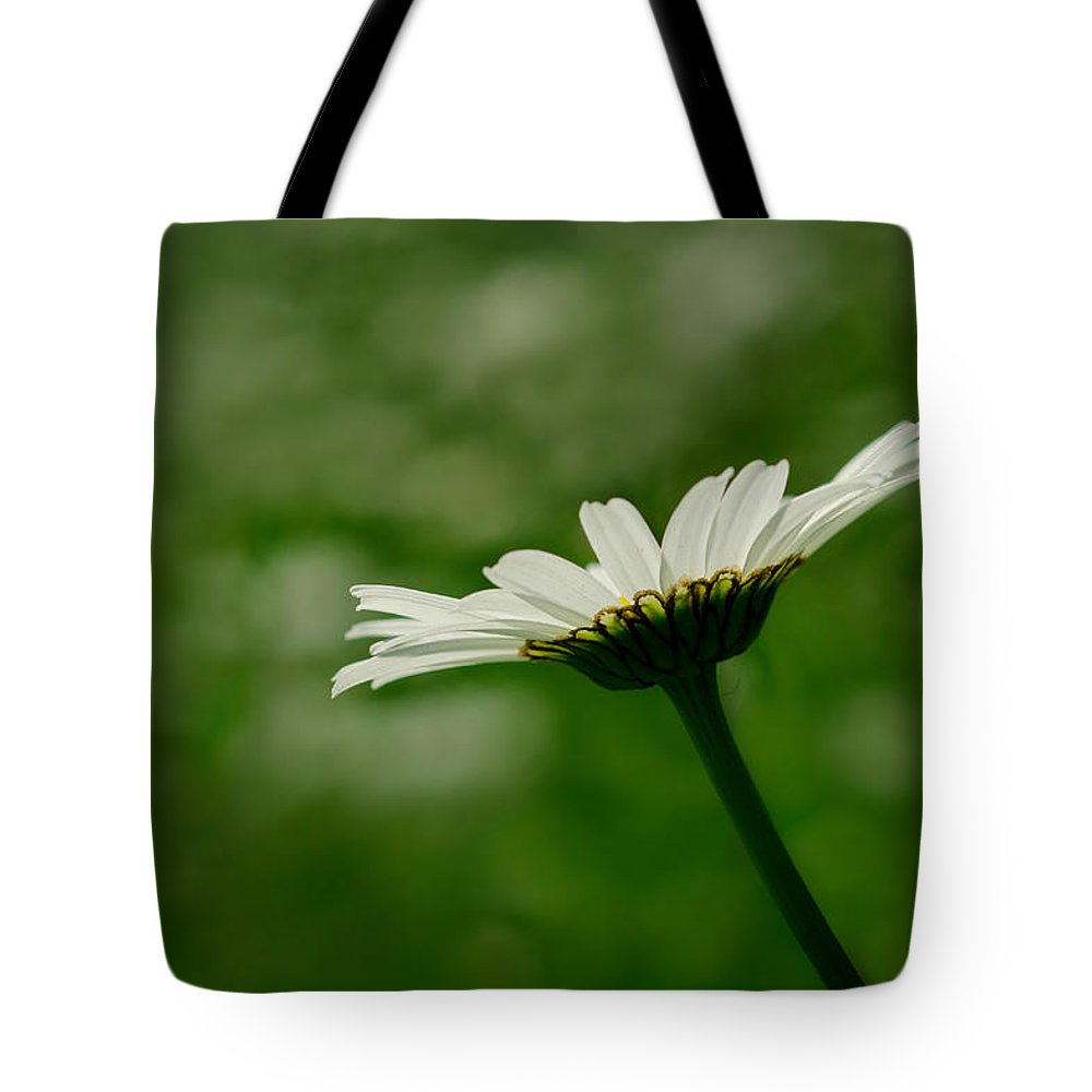 Flower Tote Bag featuring the photograph White Daisy by TouTouke A Y