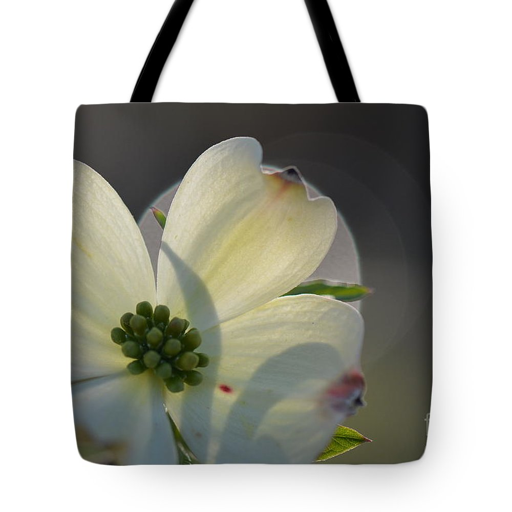 Honey Tote Bag featuring the photograph White Dogwood Blooms Series Photo K by Barb Dalton