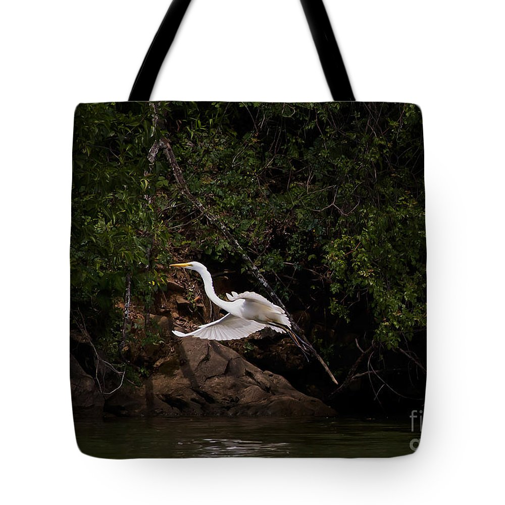 Bird Tote Bag featuring the photograph White Egret's Approach  #0615 by J L Woody Wooden