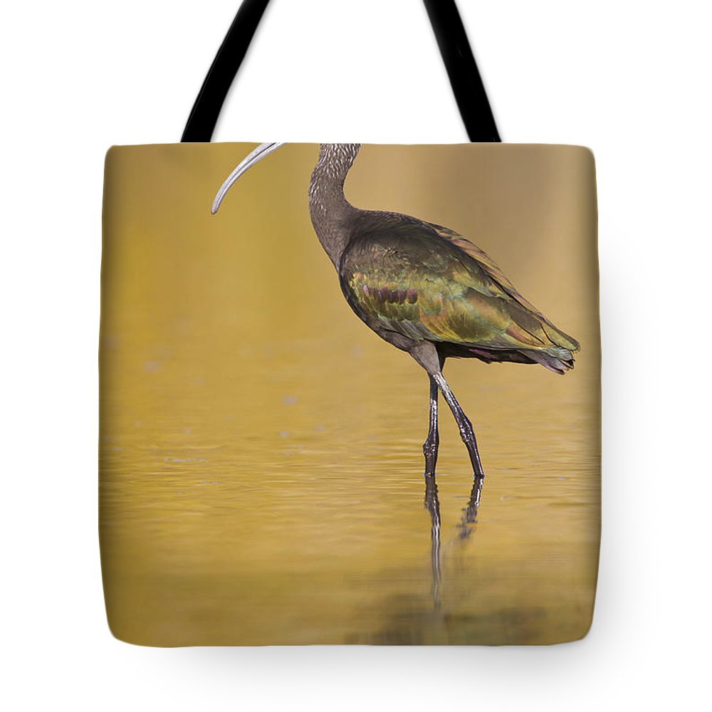 Ibis Tote Bag featuring the photograph White Faced Ibis by Bryan Keil