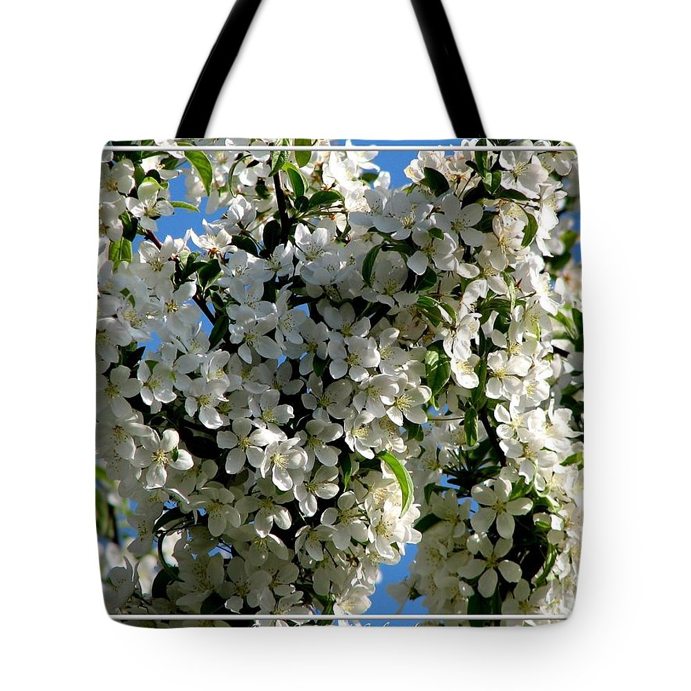 White Flowering Crabapple Tree Tote Bag For Sale By Rose Santuci