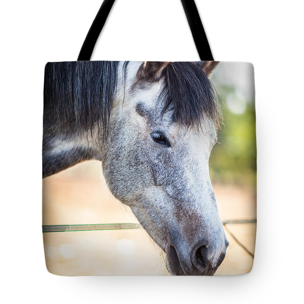 View Tote Bag featuring the photograph White Horse Head by Desislava Panteva