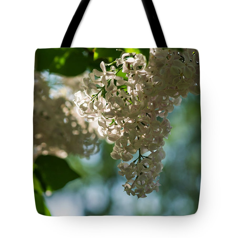 Beautiful Tote Bag featuring the photograph White Lilacs In The Shade - Featured 2 by Alexander Senin