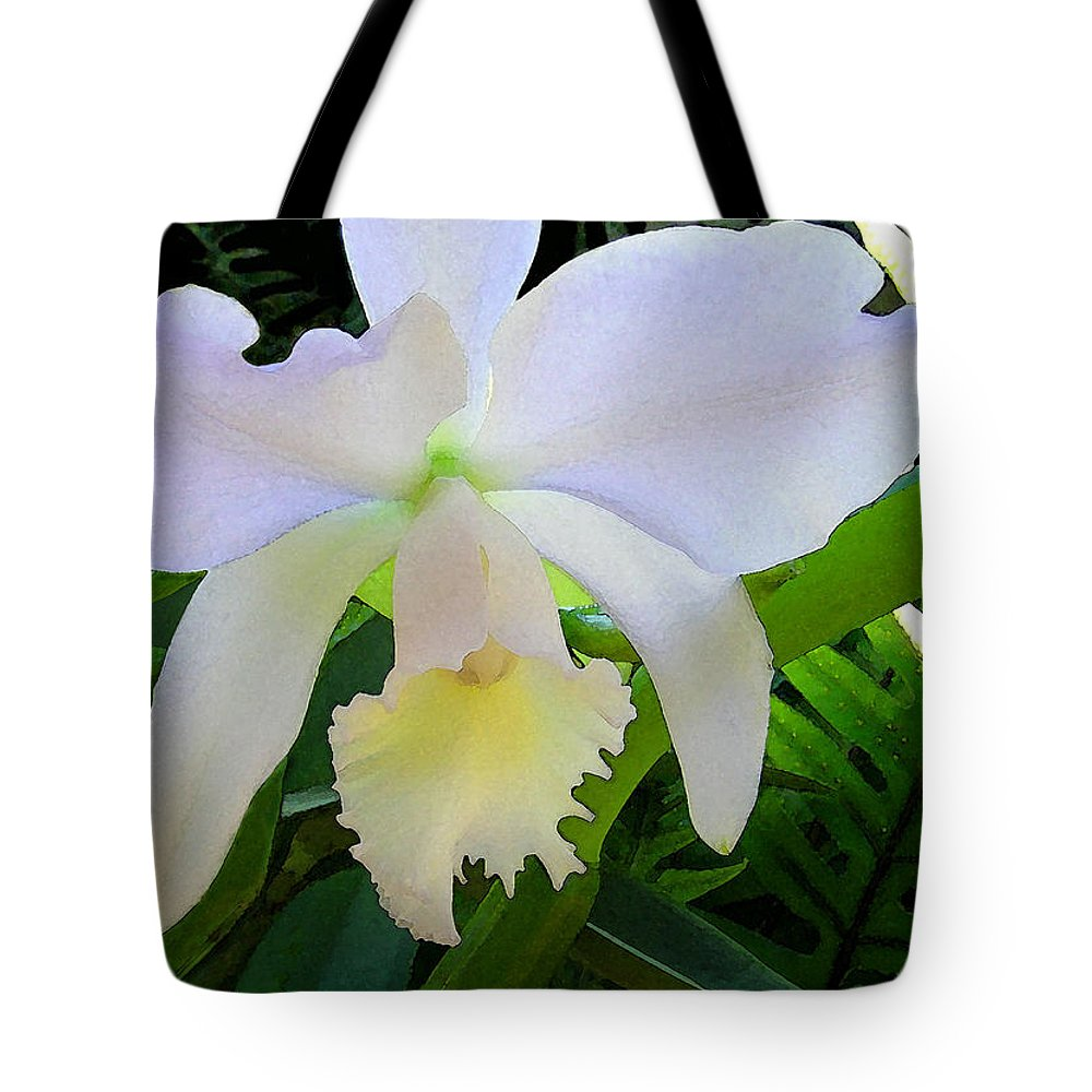 Orchids Tote Bag featuring the photograph White Orchid by James Temple