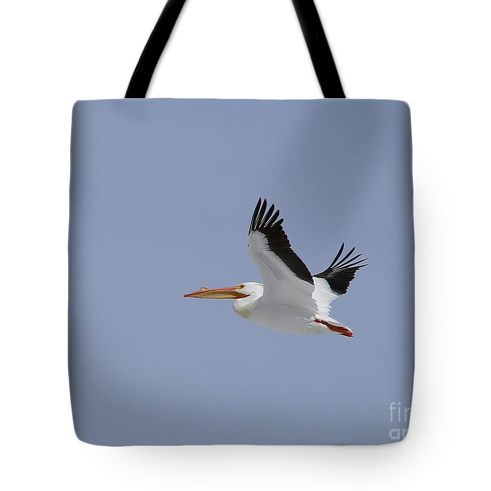Tote Bag featuring the photograph White Pelican In Flight by Marty Fancy