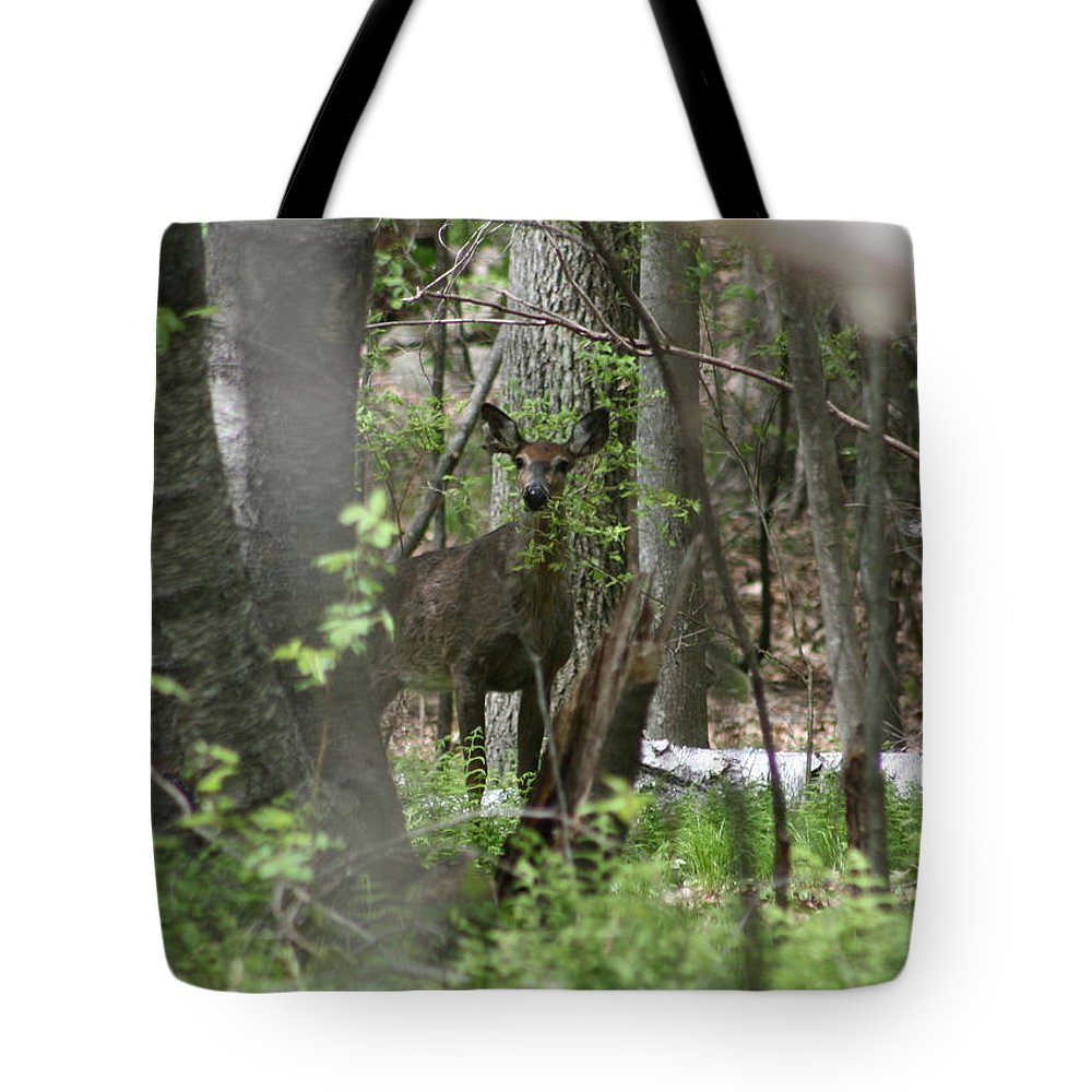 White Tailed Deer Portrait Tote Bag featuring the photograph White Tailed Deer Encounter by Neal Eslinger