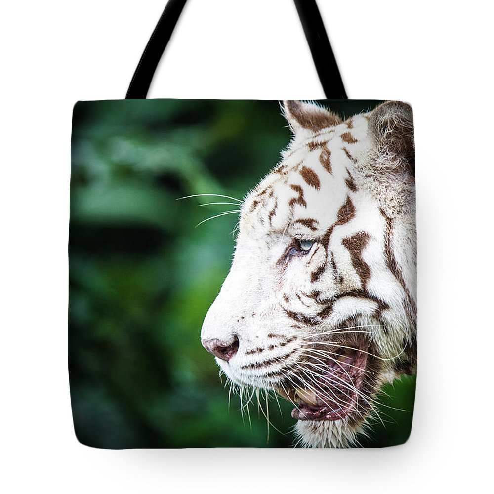 Snarling Tote Bag featuring the photograph White Tiger by Tony Kh Lim