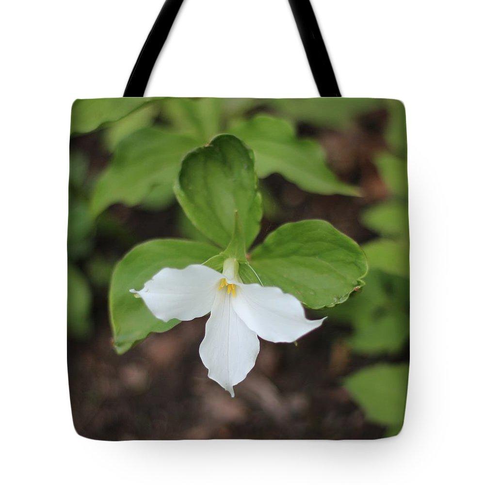 Flower Tote Bag featuring the photograph White Trillium by Stephanie Kripa