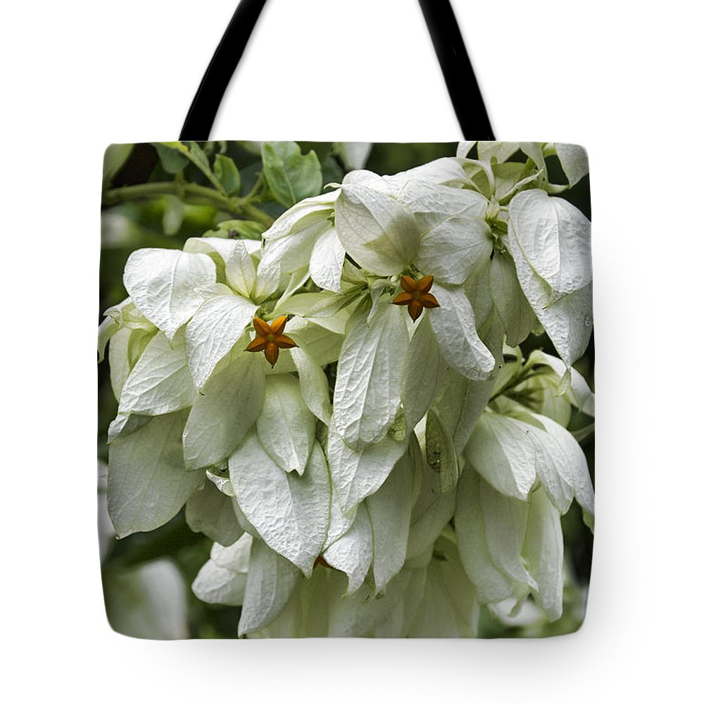 White Tote Bag featuring the photograph White Veil Of Tropical Flowers by Douglas Barnard