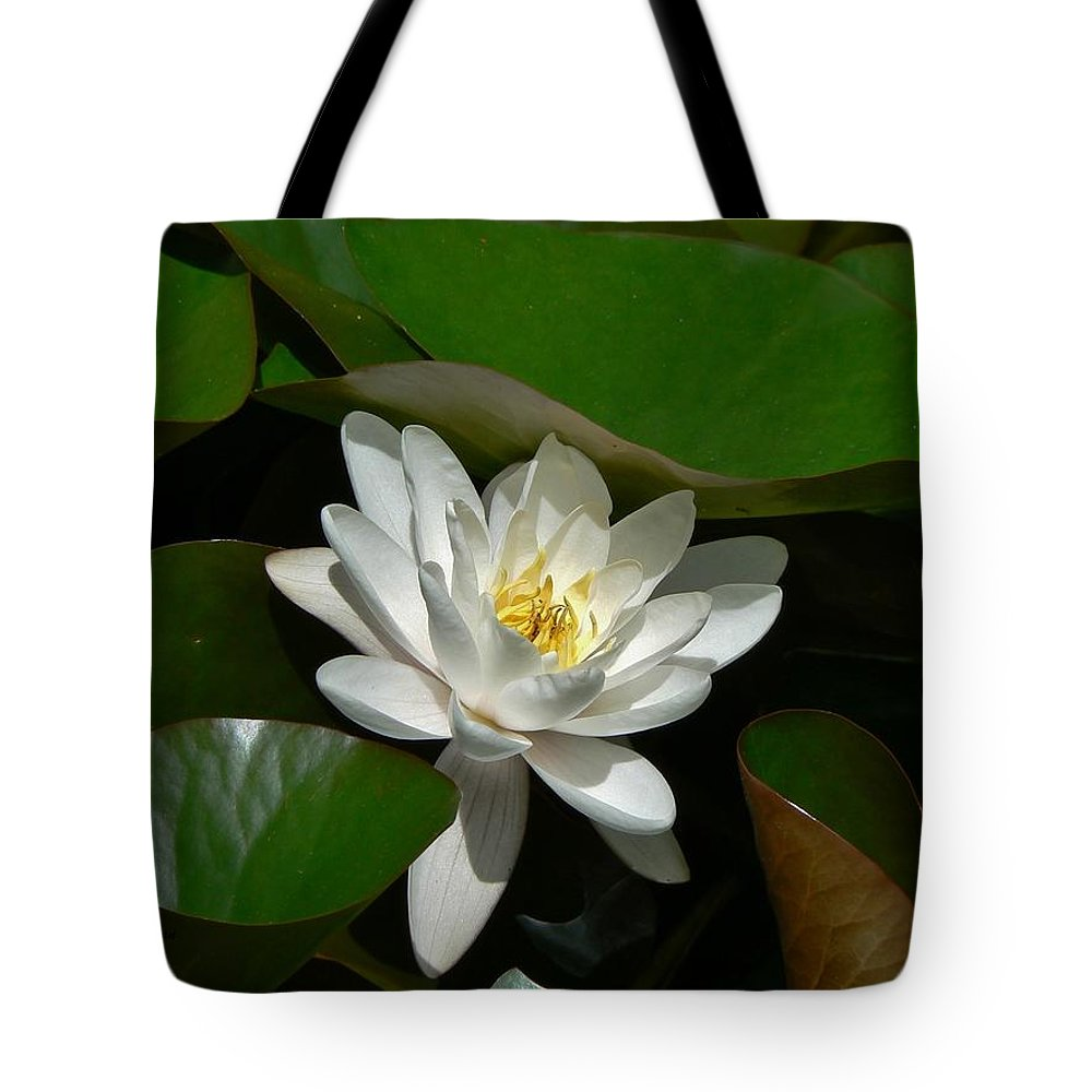 White Waterlily Lotus Tote Bag featuring the photograph White Waterlily Lotus by Barbara St Jean