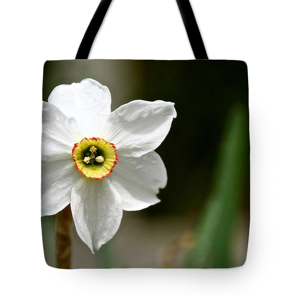 Flower Tote Bag featuring the photograph White Wind Bravery by Susan Herber