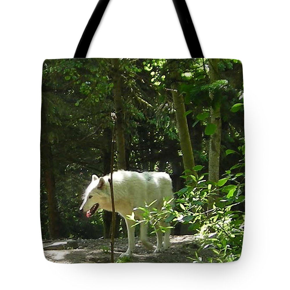Wolf Tote Bag featuring the photograph White Wolf In Forest by Scarebaby Design