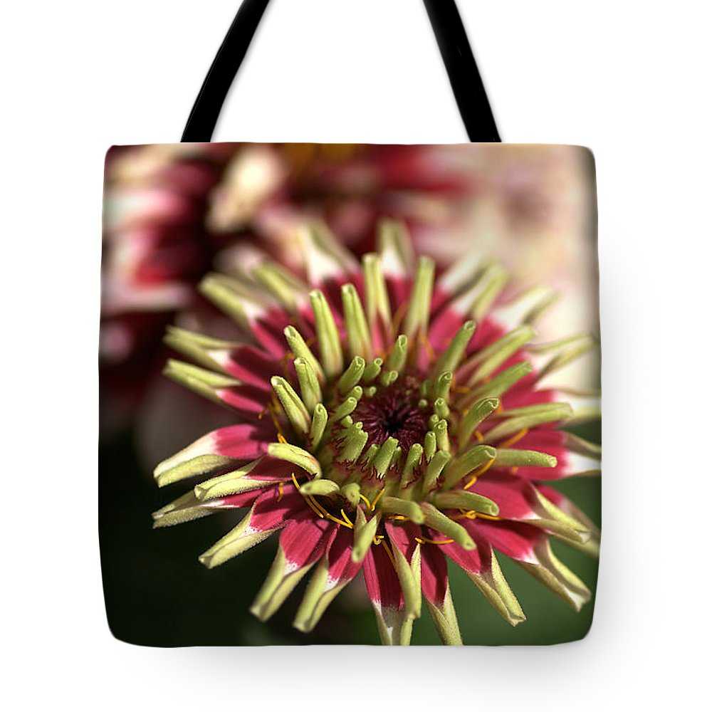 Flower Tote Bag featuring the photograph White Zinnia by Joy Watson