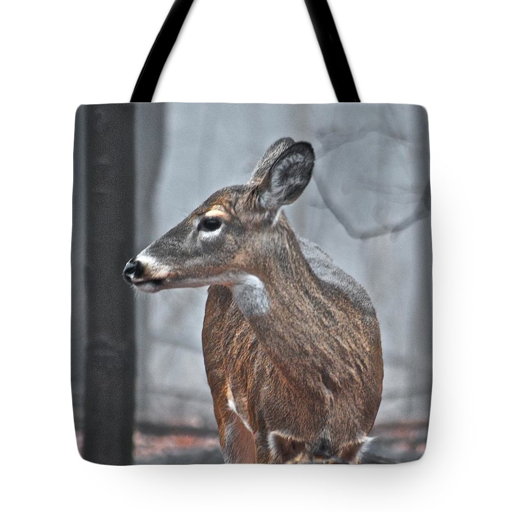 Animal Tote Bag featuring the photograph Whitetail On A Foggy Morning by Michael Peychich