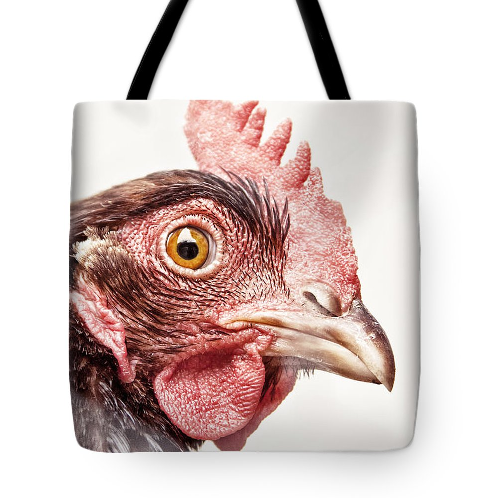 Chicken Tote Bag featuring the photograph Who Are You? by Caitlyn Grasso