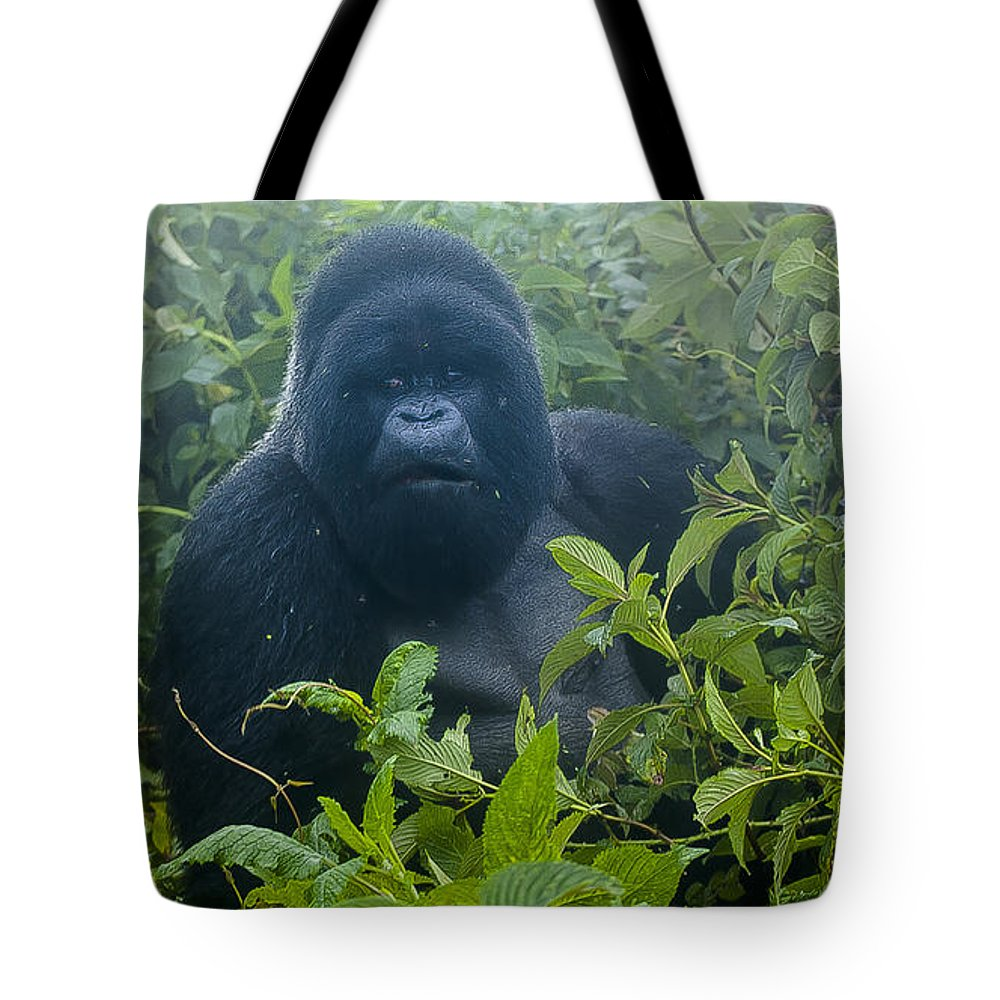 Rwanda Tote Bag featuring the photograph Who Goes There by Paul Weaver