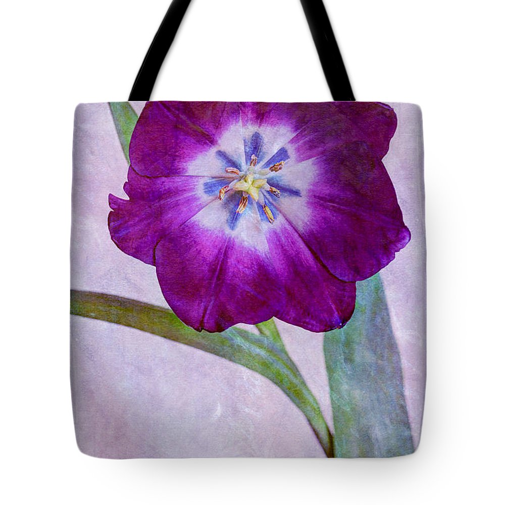 Purple Tote Bag featuring the photograph Wide Open Tulip by Heidi Smith