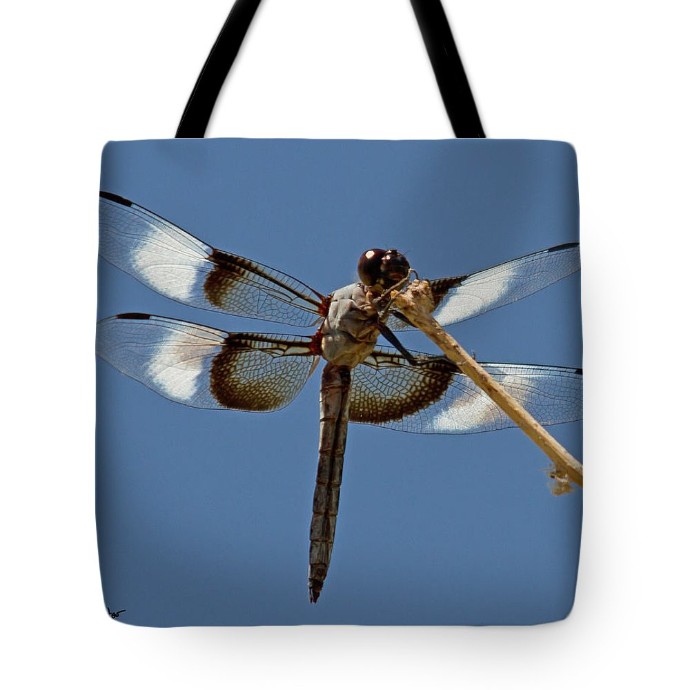 Nature Tote Bag featuring the photograph Widow Skimmer by David Salter