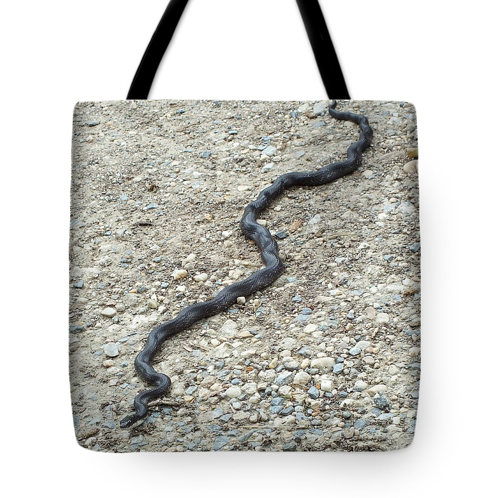 Wiggle Tote Bag featuring the photograph Wiggle by Kimmary MacLean