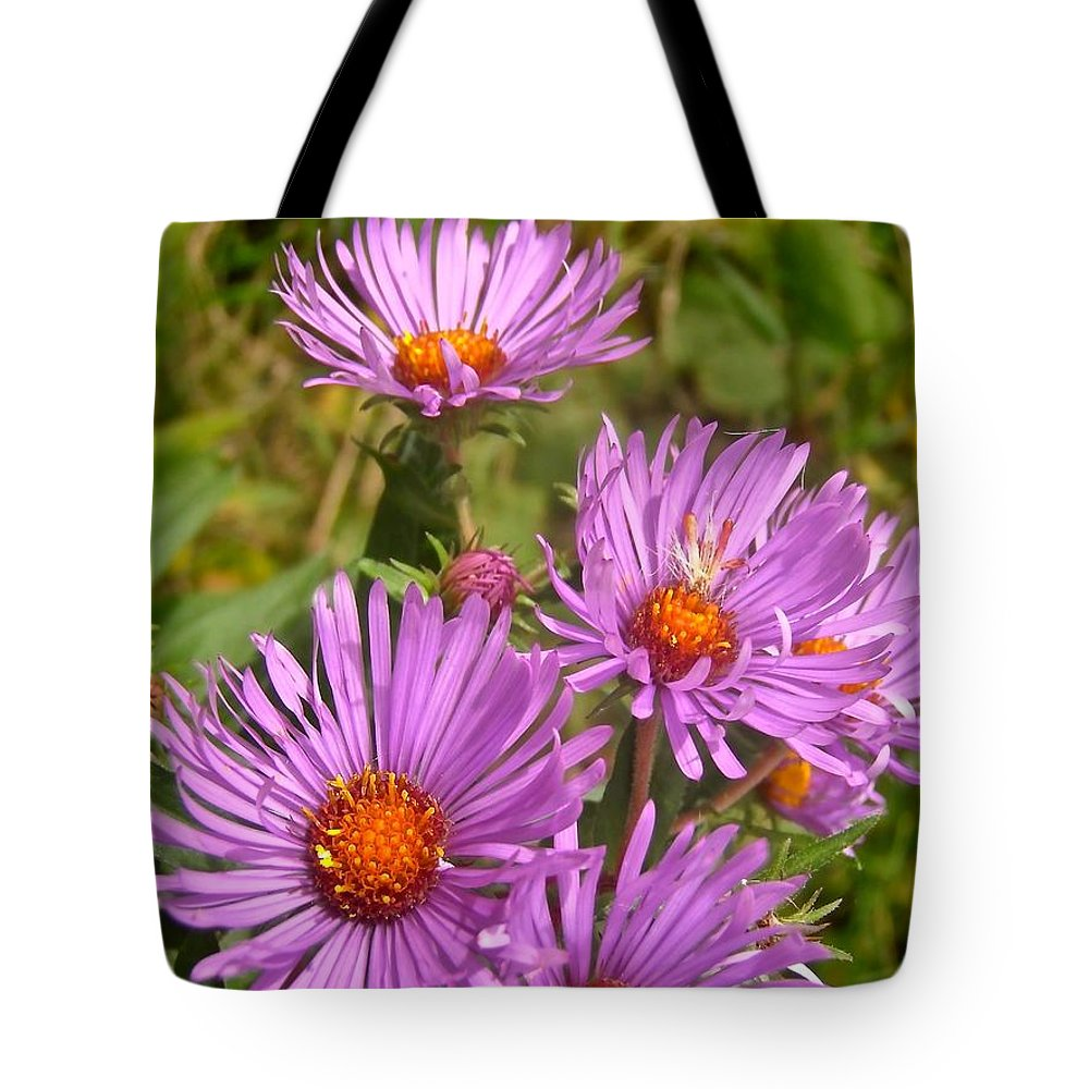 Flowers Tote Bag featuring the photograph Wild Asters by Stephanie Moore