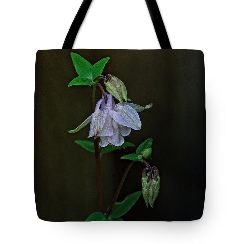 Aquilegia Photographs Tote Bags