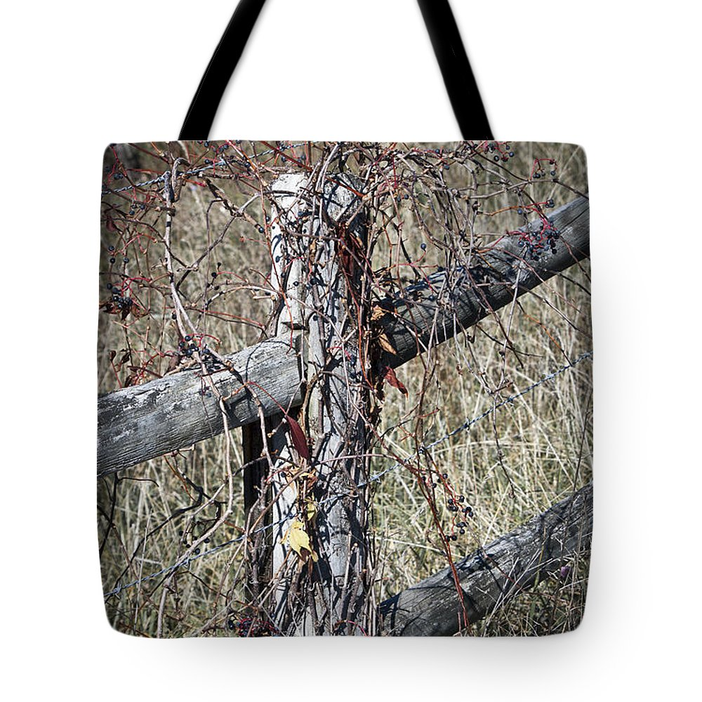 Fall Tote Bag featuring the photograph Wild Berries On Fence by Teresa Mucha