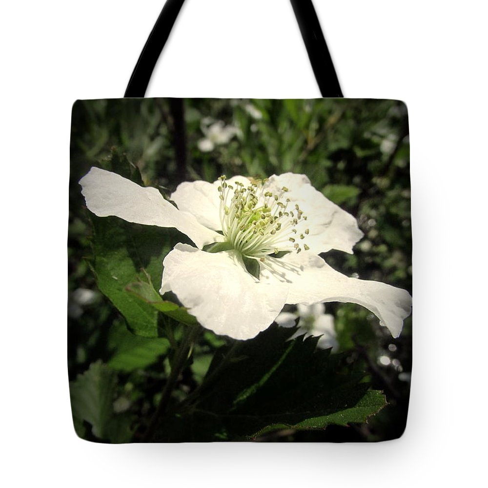 Berry Tote Bag featuring the photograph Wild Blackberry Blossom by Joyce Dickens