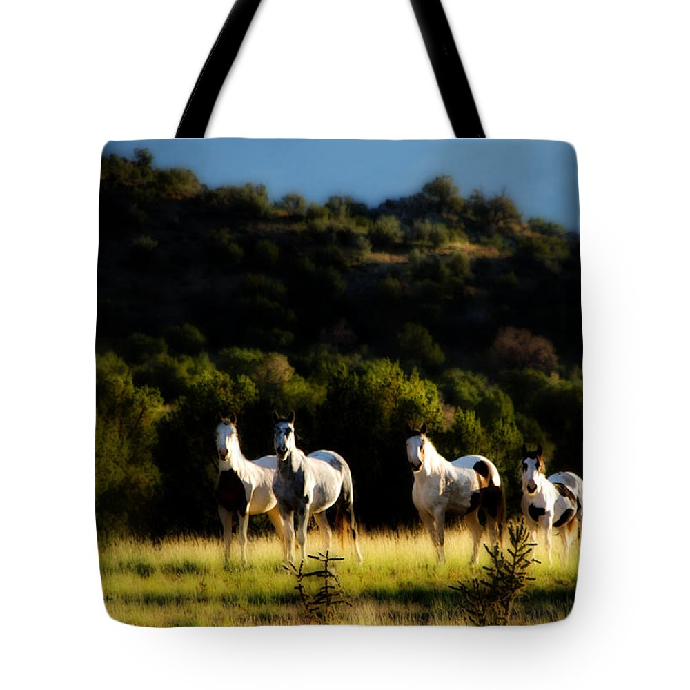 Wild Free Freedom Mustang Equine Horse Hills Blue Sky Grass green Grass Trees Desert high Desert new Mexico Nm Sw Southwest Southwestern Nature roch Hart Tote Bag featuring the photograph Wild Dream by Roch Hart