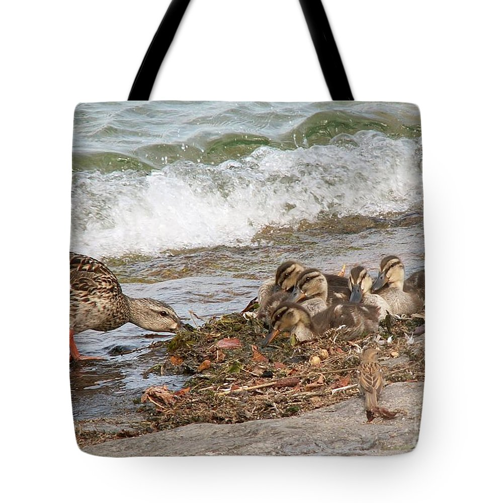 Wild Tote Bag featuring the photograph Wild Ducks by Evgeny Pisarev