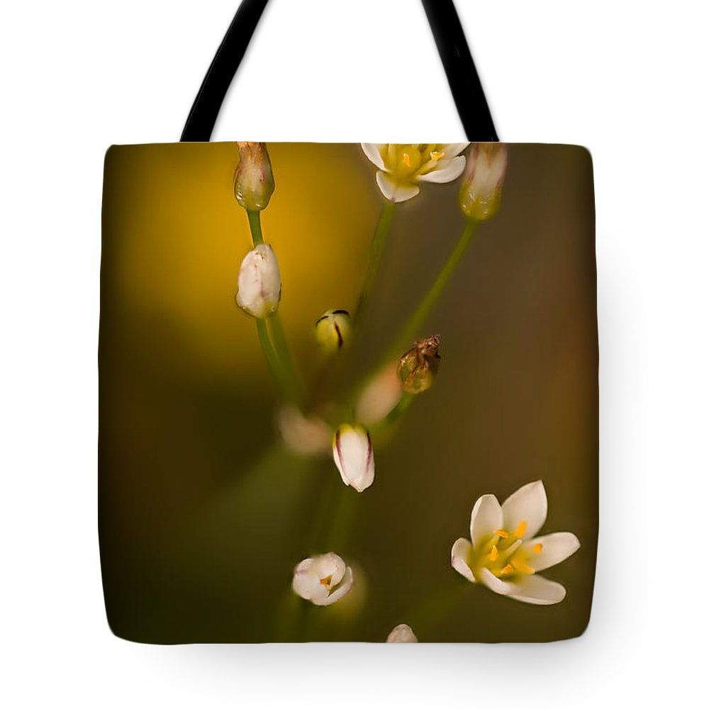 2012 Tote Bag featuring the photograph Wild Garlic by Robert Charity