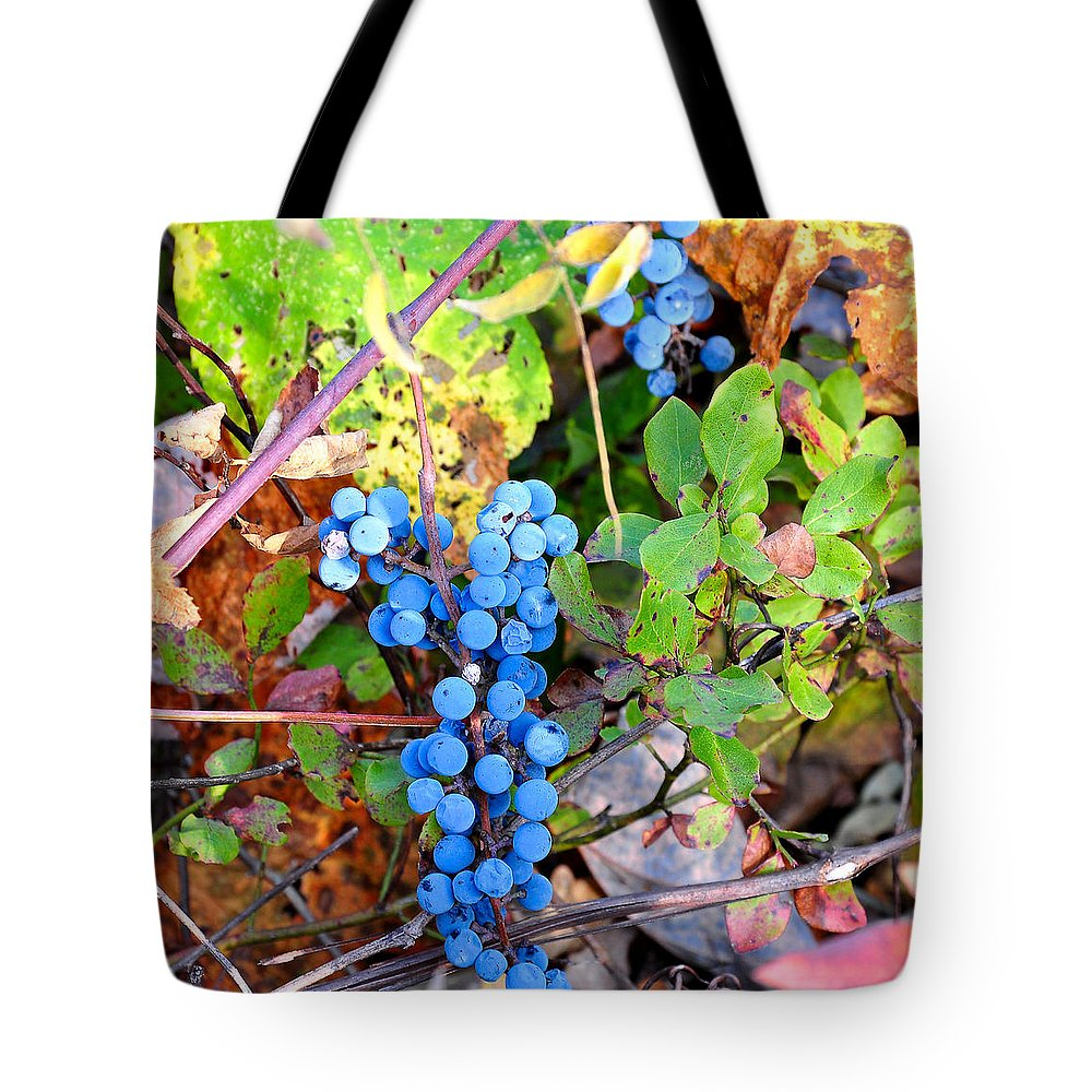 Fox Grapes Tote Bag featuring the photograph Wild Grapes by Todd Hostetter