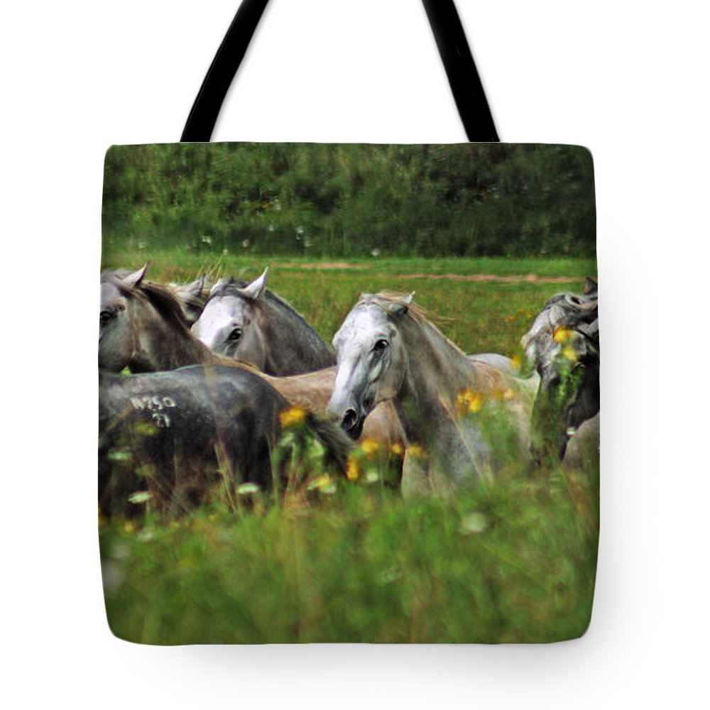 Horse Tote Bag featuring the photograph Wild Horses by Angel Ciesniarska