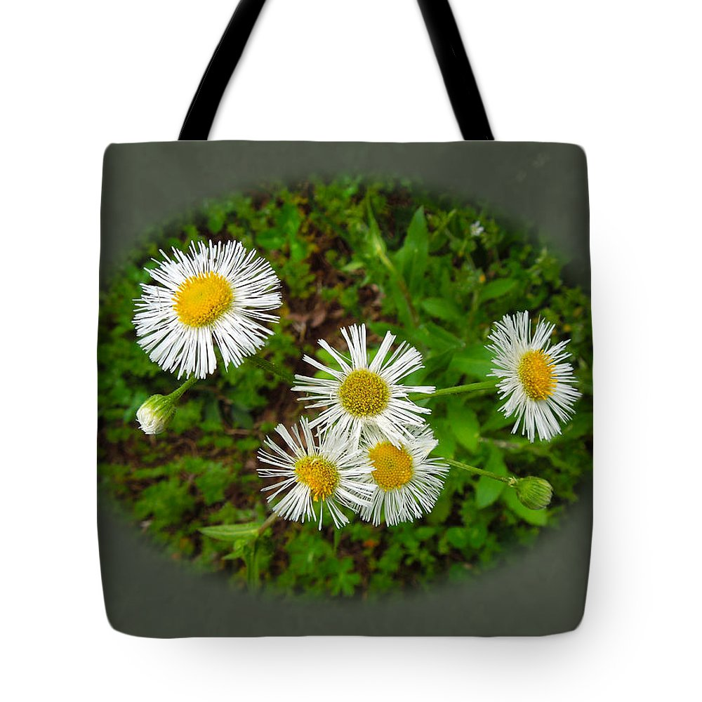 Macro Tote Bag featuring the photograph Wild Miniature Daisies by Pete Trenholm