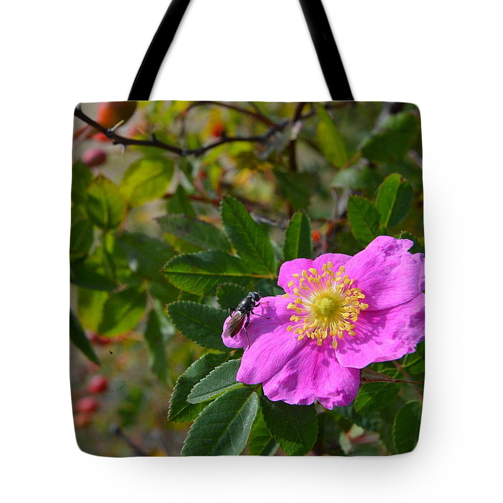 #wild Rose Tote Bag featuring the photograph Wild Rose 3 by Randy Giesbrecht