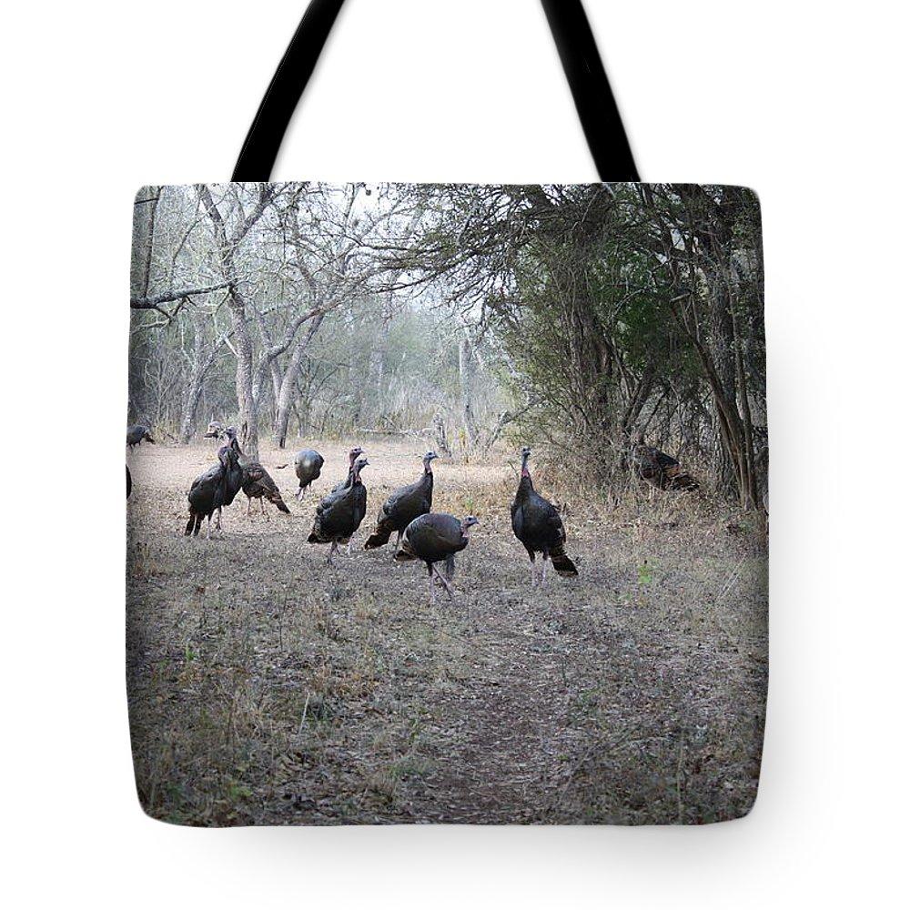 Bird Tote Bag featuring the photograph Wild Turkeys II by Jeff Tuten