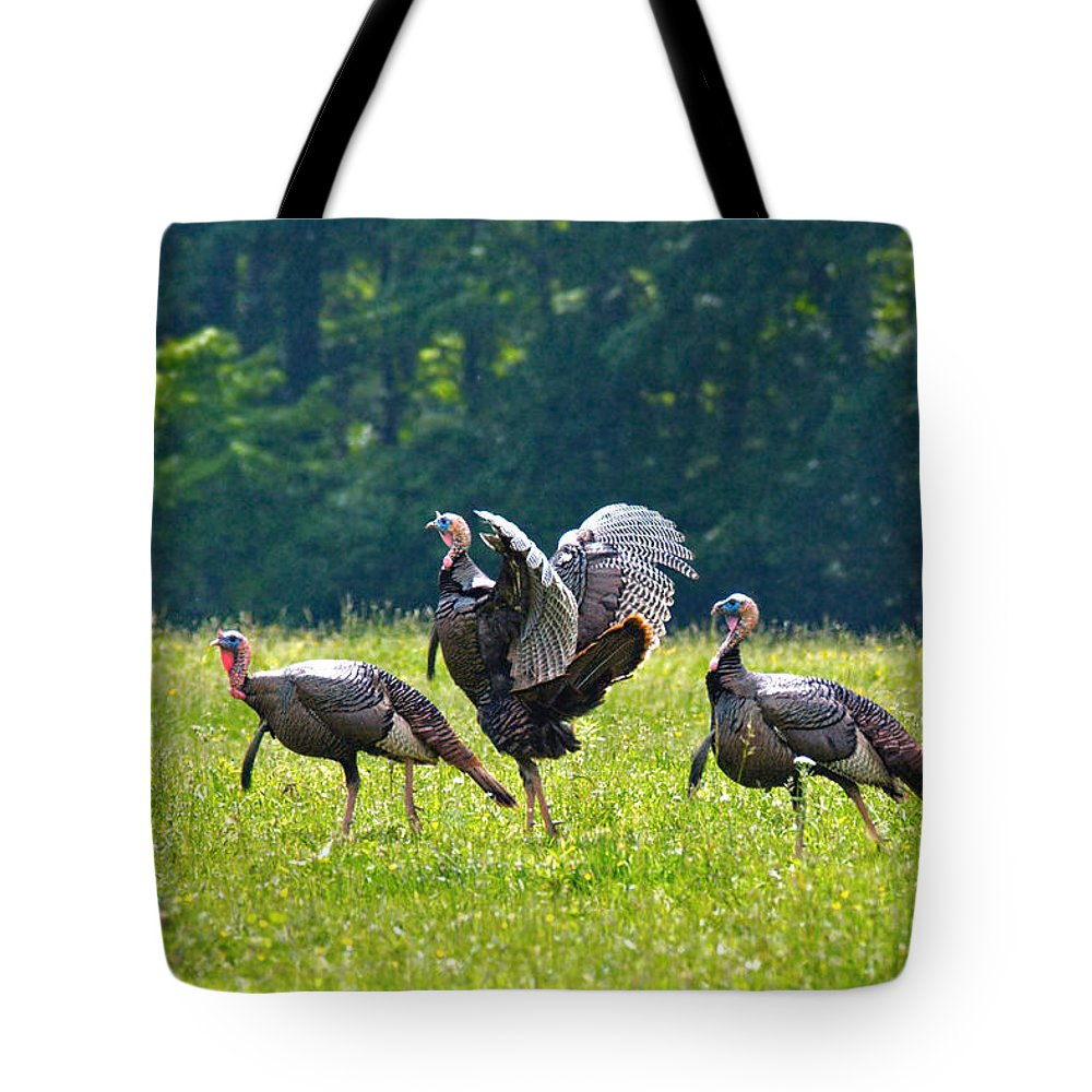 Wild Turkeys Tote Bag featuring the photograph Wild Turkeys by Mary Almond