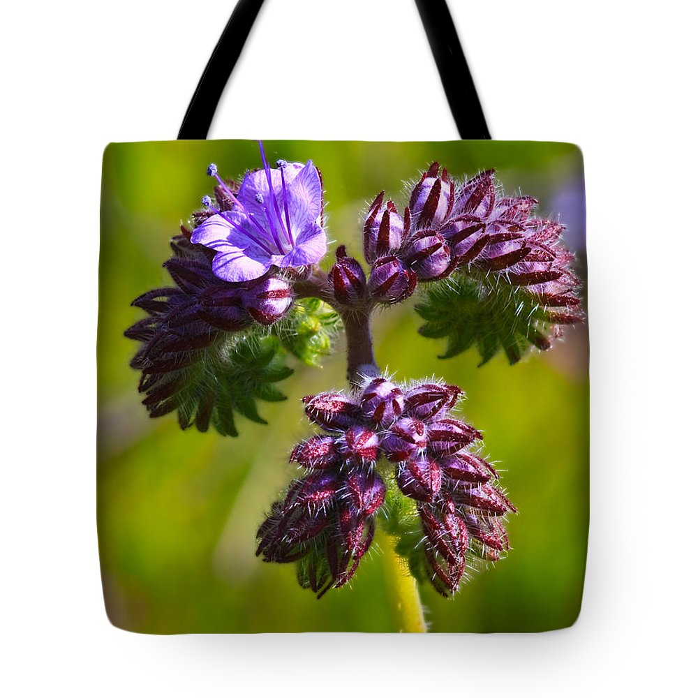 Wildflower Tote Bag featuring the photograph Wildflower by Beth Sargent