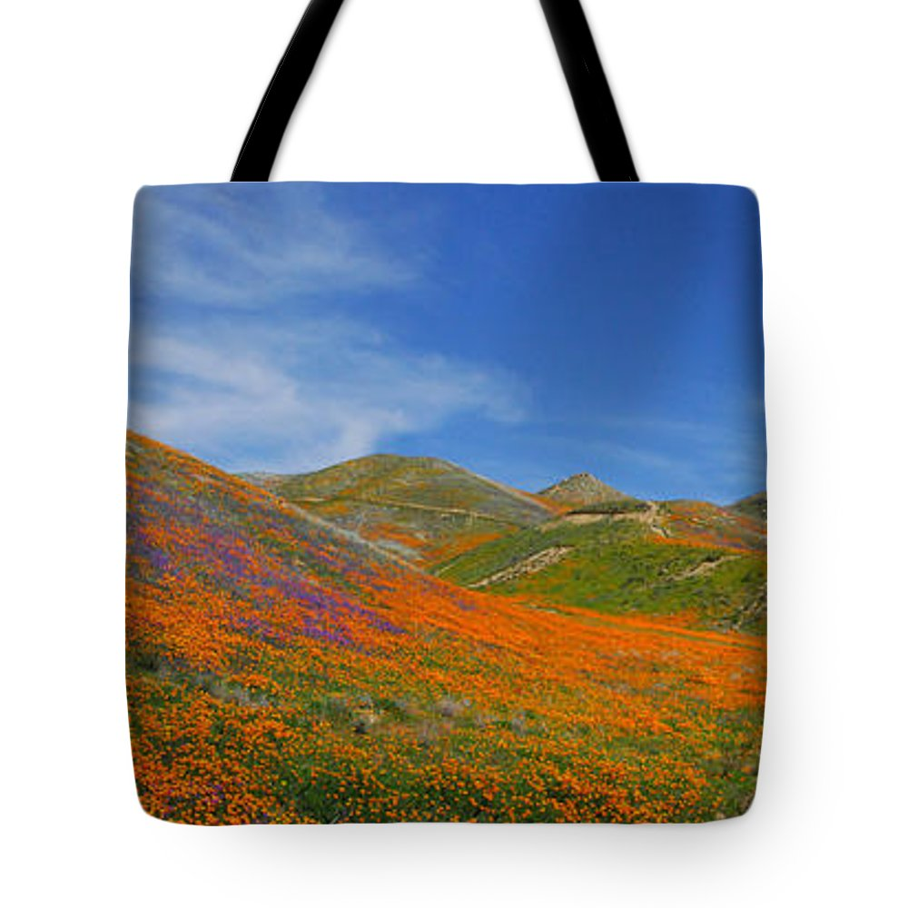 Wildflowers Tote Bag featuring the photograph Wildflower Extravaganza by Lynn Bauer