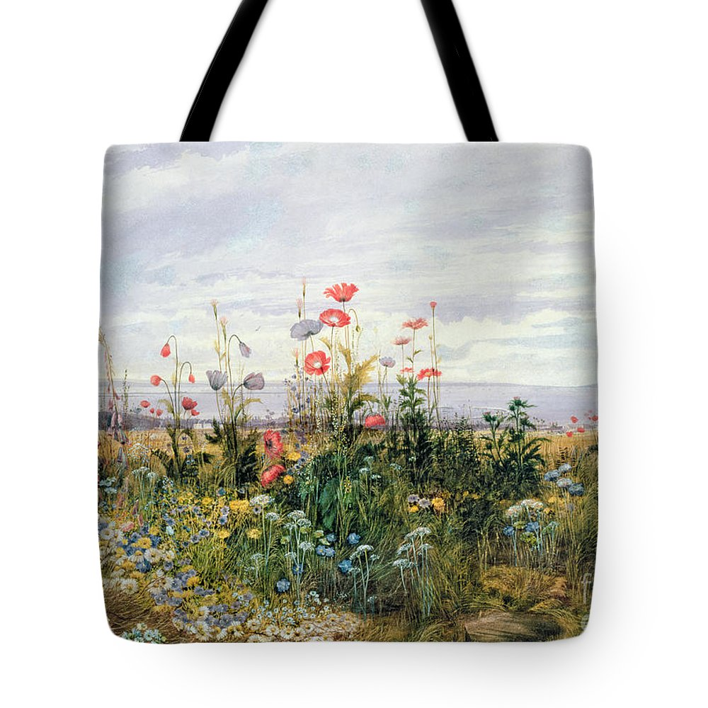 Meadow; Flowers; Irish; Wild; Landscape; Poppies Tote Bag featuring the painting Wildflowers with a View of Dublin Dunleary by A Nicholl