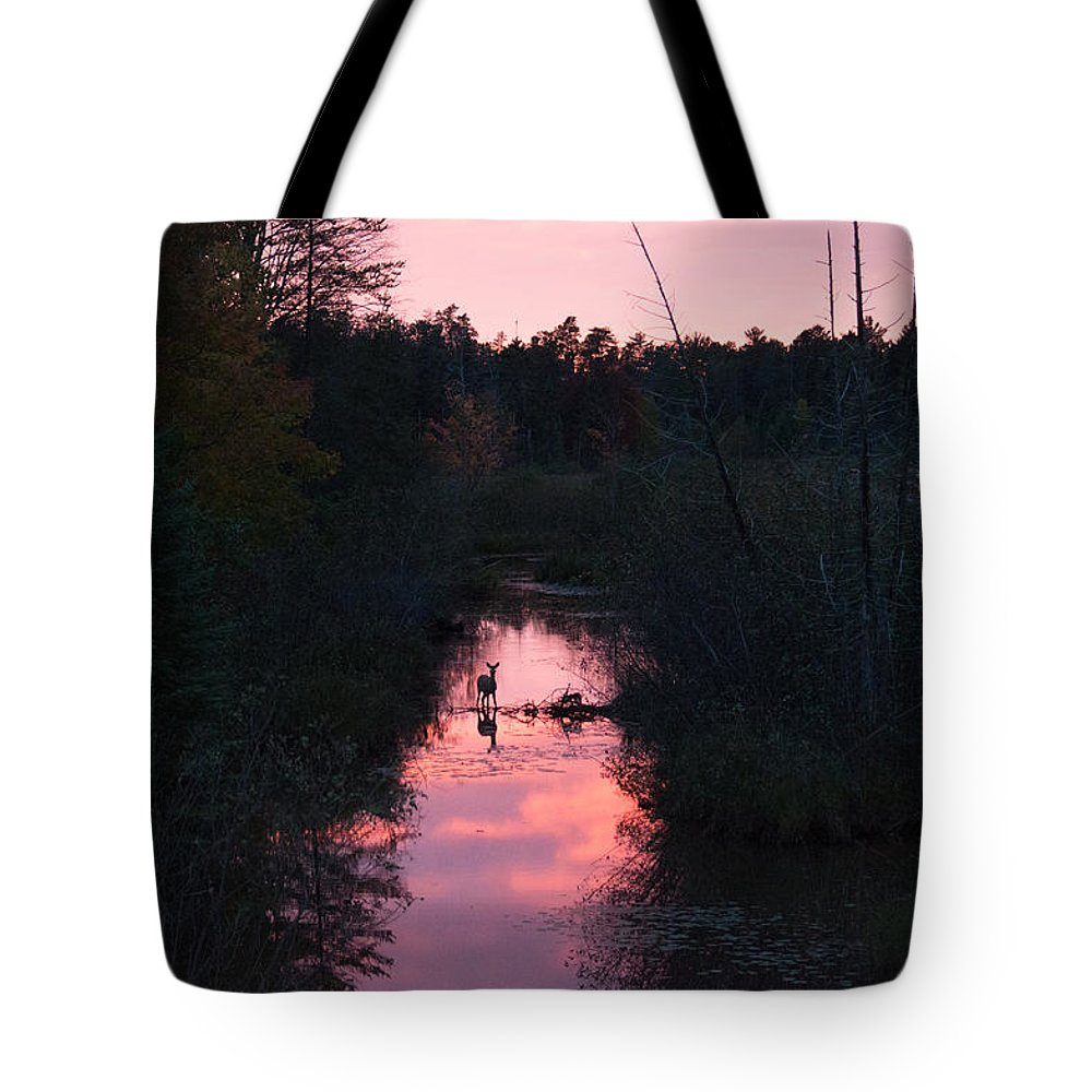 Sunset Tote Bag featuring the photograph Wildlife Sunset by Linda Kerkau