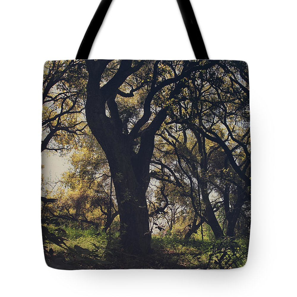 Dry Creek Hills Regional Park Tote Bag featuring the photograph Wildly and Desperately My Arms Reached Out to You by Laurie Search