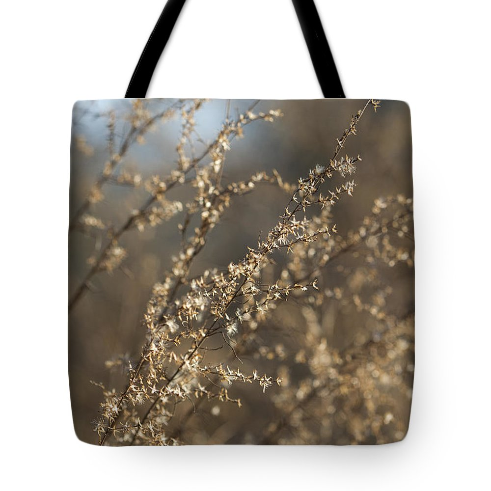 Weeds Tote Bag featuring the photograph Will O Wisps by Kathy Clark