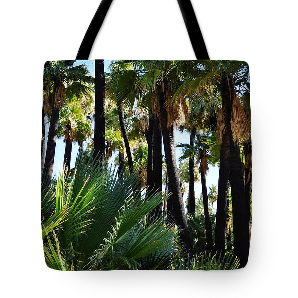 Willis Tote Bag featuring the photograph Willis Palm Oasis by Kyle Hanson