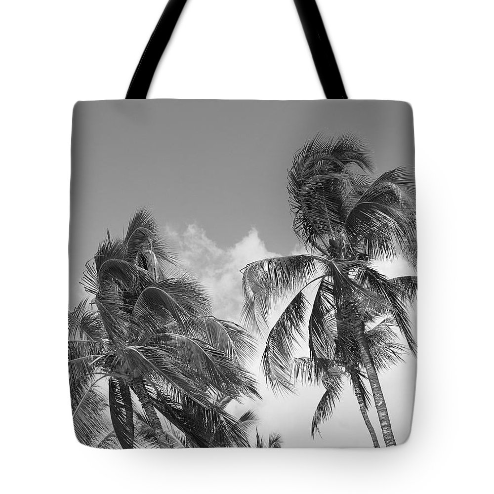 Hawaii Tote Bag featuring the photograph Wind by Athala Carole Bruckner