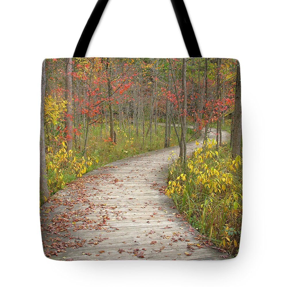 Autumn Tote Bag featuring the photograph Winding Woods Walk by Ann Horn