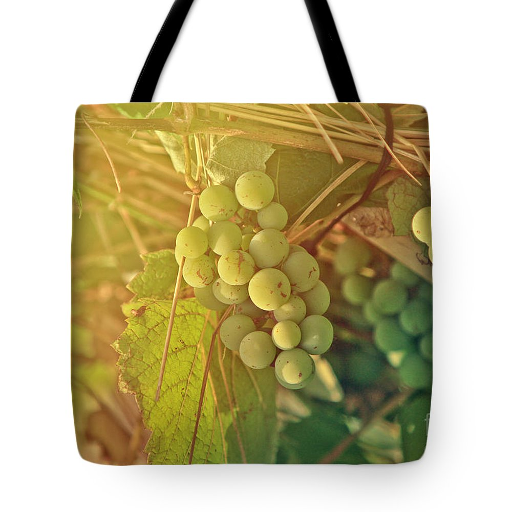 One Tote Bag featuring the photograph Wine Grapes by Dan Radi