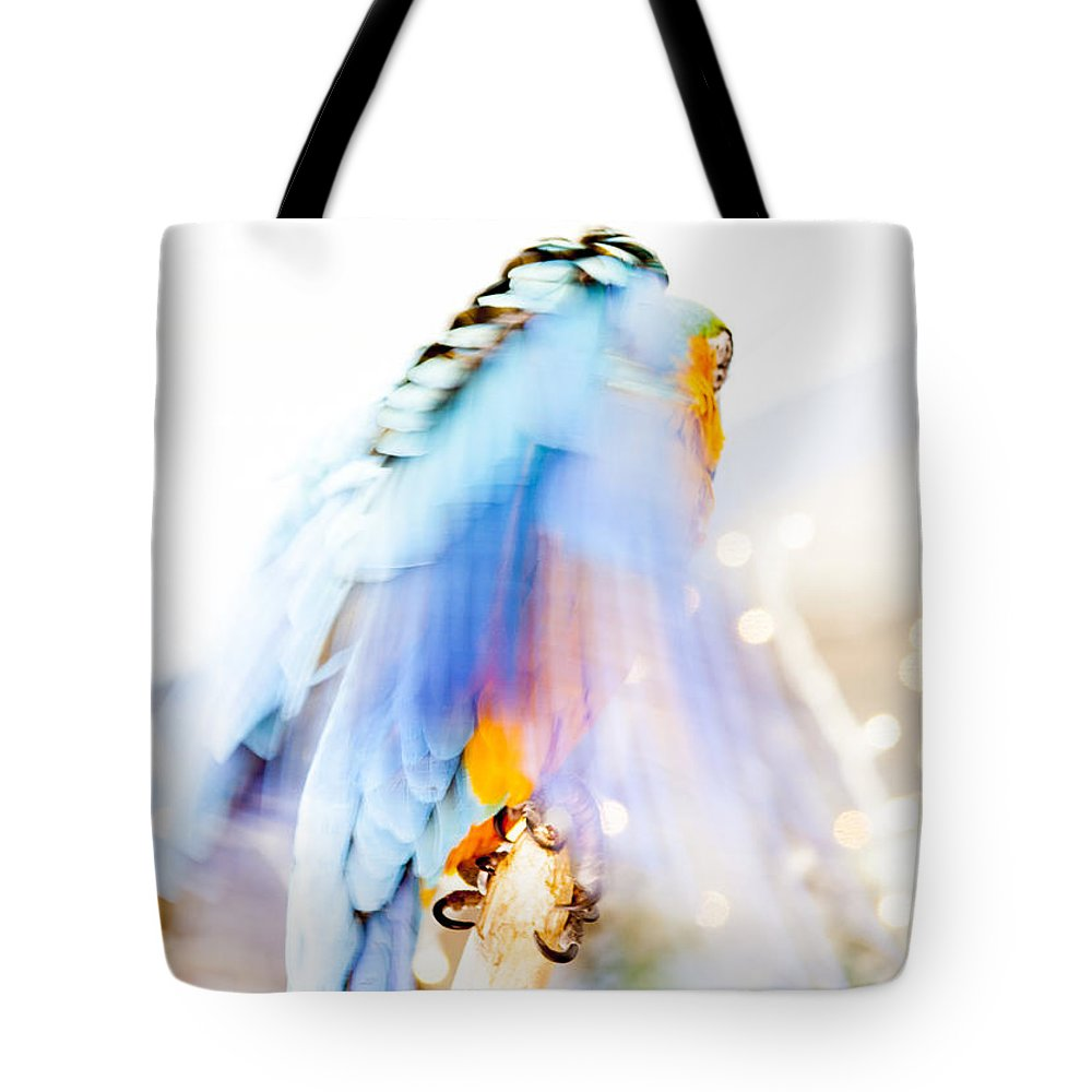 Macaw Tote Bag featuring the photograph Wing Dream by Fran Riley