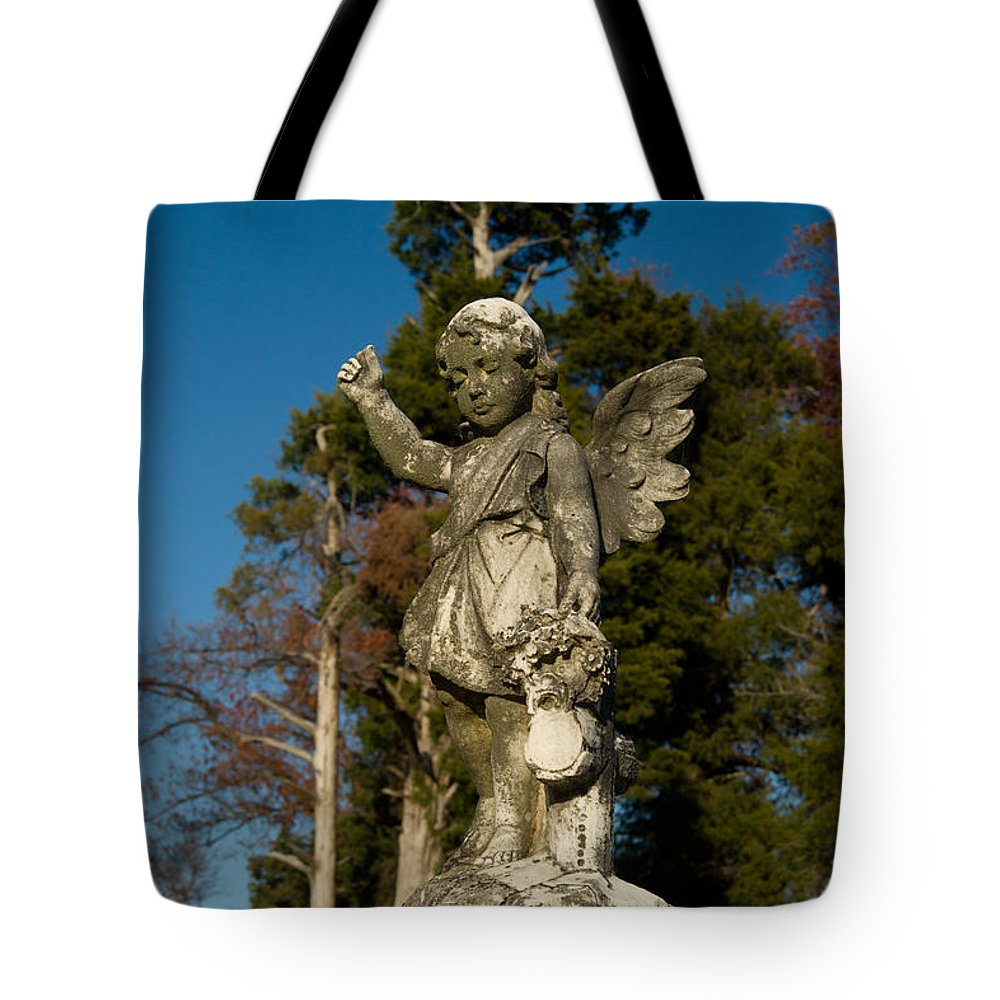 Winged Tote Bag featuring the photograph Winged Girl 13 by Douglas Barnett