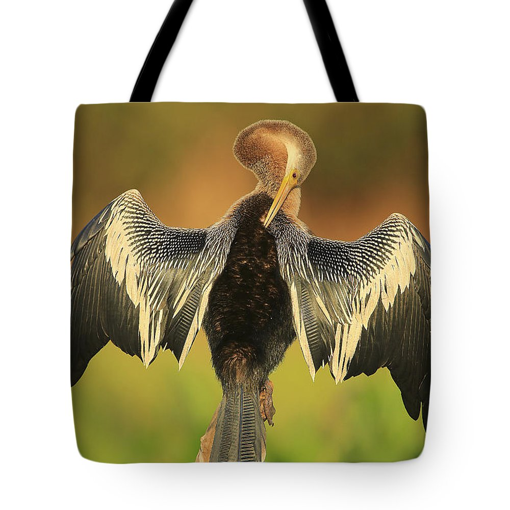 Anhinga Print Tote Bag featuring the photograph Wings Out by Leigh Lofgren