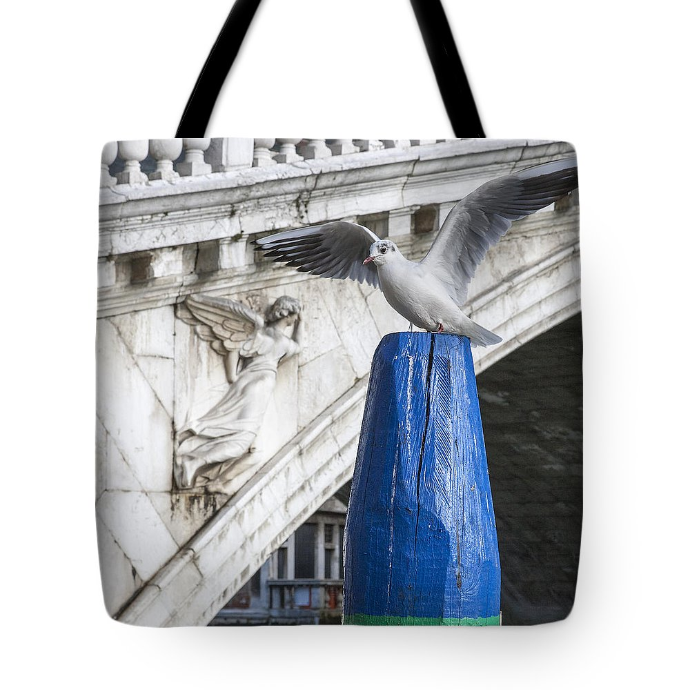 Italia Tote Bag featuring the photograph Wings by Sonny Marcyan